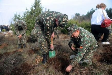 macedonian tree planting[5]